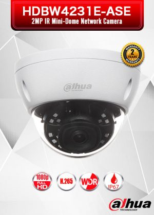 Dahua 2MP IR Mini Dome Network Camera - HDBW4231E-ASE