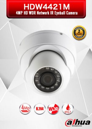 Dahua 4MP HD WDR Network IR Eyeball Camera - DH-IPC-HDW4421M
